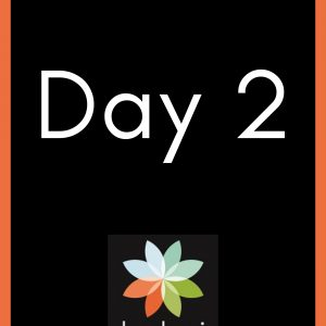 The words Day 2 and the Keduzi logo, which is a colourful flower.
