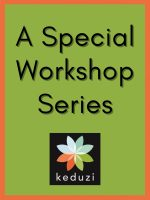A Special Workshop Series, with the Keduzi logo, which is a colourful logo.